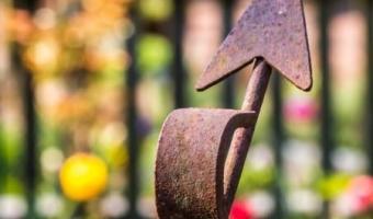 Garten_Impression
